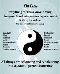 pin by hector ortiz on the tao of martial arts yin