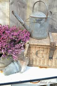 decorative watering cans 746 best galvanized zinc images on pinterest watering cans