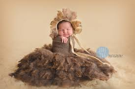 lion costume wizard of oz wizard of oz themed newborn photos june bug photography