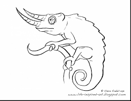 astounding lizard coloring pages printable with chameleon coloring
