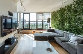 prepossessing 20 living room plants inspiration design of best 10