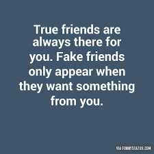 Fake People Memes - true friends are always there for you fake friends funny status