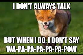 What Did The Fox Say Meme - the most interesting fox in the world imgur