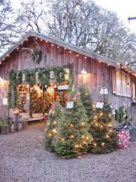 northern lights christmas tree farm christmas lights decoration