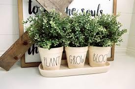 Herb Topiaries 25 Stems Plants Topiaries U0026 Vessels To Beat The Winter Blues