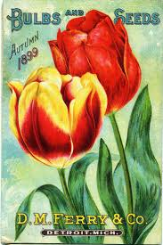 vintage seed packets 180 best vintage seed packets images on etchings