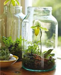 10 ways to upcycle glass bottles u0026 jars a cultivated nest