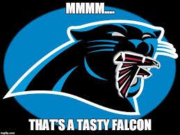 Falcons Memes - carolina panthers falcons memes imgflip