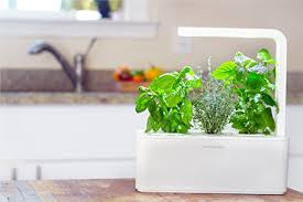 click u0026 grow indoor smart herb garden kit with 3 basil cartridges