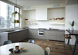 painting kitchen cabinets ideas bloggers home renovation tone