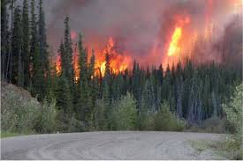 Wildfire Bc Area by Wildfire Psa 2017 Tourism Industry Association Of Bc