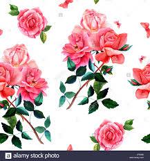vintage flower drawings stock photos u0026 vintage flower drawings