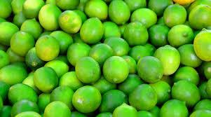 key lime green key lime pie brynmill coffee house