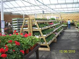 Garden Centre Ideas Plant Stands At Stansted Garden Centre More Ideas Leonora