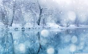 winter snow wallpaper 2560x1600 77892