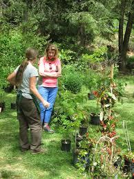 Asheville Nc Botanical Garden by Bga 2017 Spring Plant Sale U2013 Botanical Gardens At Asheville