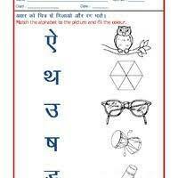 hindi grammar worksheet hindi worksheet language worksheet hindi