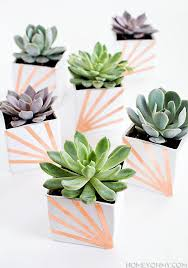 succulent planters diy copper and white succulent planters