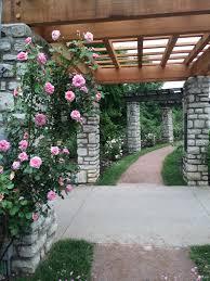 rose garden at jacob loose park flowers pinterest