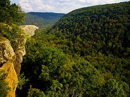 Arkansas forest images Ozark national forest an arkansas natlforest located near springdale jpg
