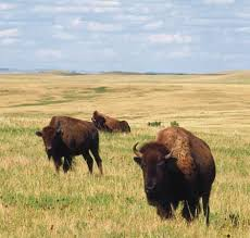 North Dakota natural attractions images North dakota history geography state united states jpg