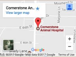 joplin mo map veterinarian in joplin mo cornerstone hospital