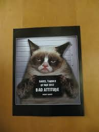 welcome back funny cat clipartsgramcom welcome funny cat tridanim