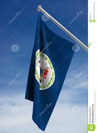 Virginia Flags State Flag Of Virginia Stock Illustration Image Of Virginian