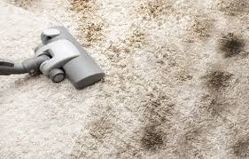upholstery cleaning santa barbara naturalist carpet and upholstery cleaning santa barbara ca