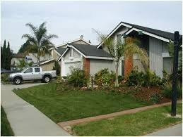 Tropical Backyard Designs Backyards Stupendous Trendy Landscape Design Sacramento Examples