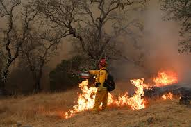 Fire Evacuations Stevens County by California Fires Leave 32 Dead A Vast Landscape Charred And A