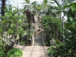 Oklahoma Botanical Gardens Crysal Bridge Tropical Conservatory Picture Of Myriad Botanical