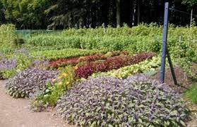 smart class online register plan your vegetable garden with smart gardening with vegetables