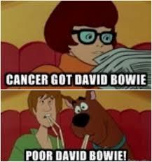 Meme Cancer - cancer got david bowie the misadventures of skooks know your meme