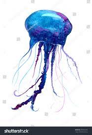 jellyfish watercolor illustration medusa painting isolated stock