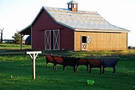 Mr Barn Daily Yarns U0027n More Our Barn