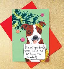 dog christmas cards sorry dog christmas cards pack of eight cards by jo clark design