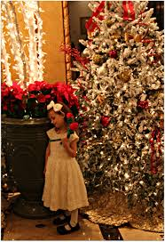 new orleans christmas memories at the roosevelt hotel