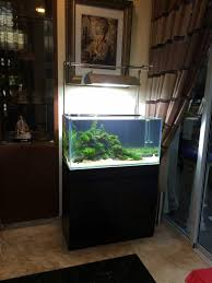 setting up a 3ft planted aquarium for our customer