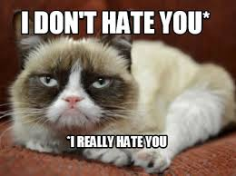 Sophisticated Cat Meme Generator - meme maker i don t hate you i really hate you meme maker