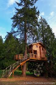 pete nelson family story u2014 nelson treehouse