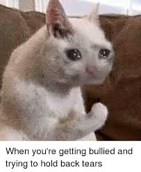 Tears Meme - when you re getting bullied and trying to hold back tears dank