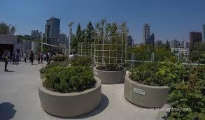 seoullo 7017 a sky garden in the heart of seoul when in south korea