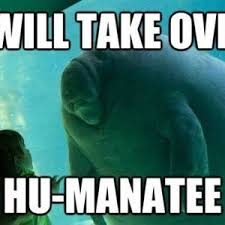 Manatee Meme - overlord manatee by burningfingerz meme center