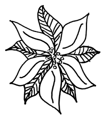poinsettia coloring pages christmas poinsettia leaves coloring book page