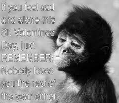 Feeling Lonely Memes - 15 funny and adorable monkey memes