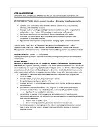 Resume Samples It Professionals by Samples U2014 Quantum Tech Resumes