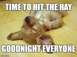 Tired Meme - 20 best sleepy memes sayingimages com