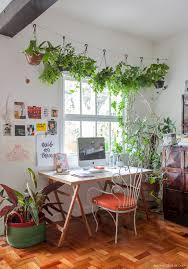 coleção de histórias study plants and hygge