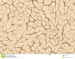 dry cracked wilderness ground texture stock illustration image